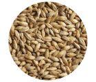 Солод светлый ячменный Pilsner malt ЕВС 2,8-4,5 (Курский солод) 1кг
